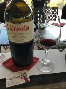 wine princess, grattamacco, bolgheri, toscana, vino rosso, Cabernet franc, Cabernet Sauvignon, Merlot e petit Verdot, alberello