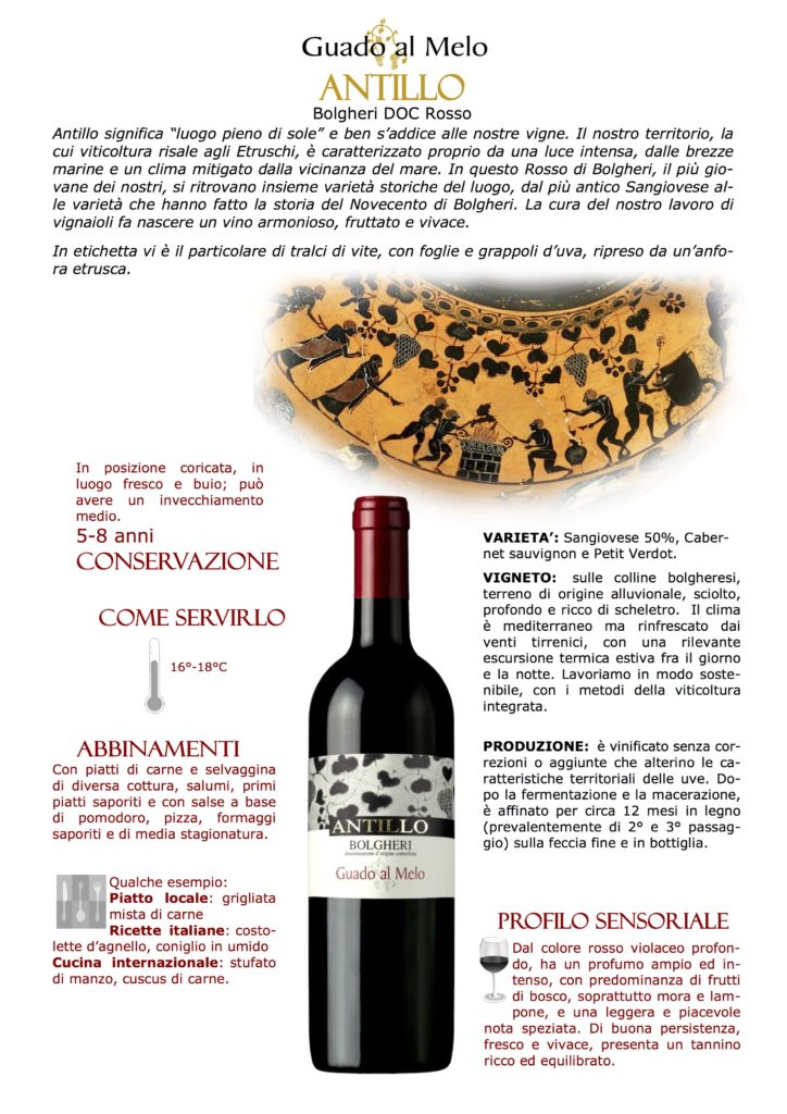 guado al melo, attilio scienza, wine princess, toscana, vini toscani, bolgheri, antillo, wine princess, museo del vino