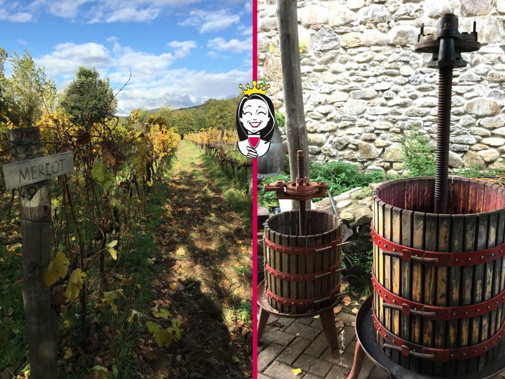 Visiting Tuscany #3 – Mulini di Segalari, Felciaino