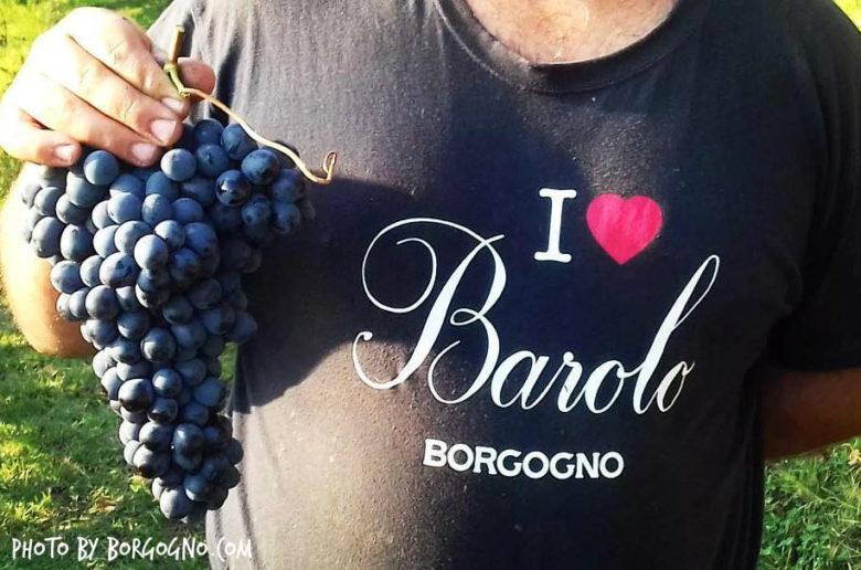 Wine Princess, Wine Blogger, Sommelier, Oscar Farinetti, Timorasso Derthona 2017, Barolo, Cantina Borgogno