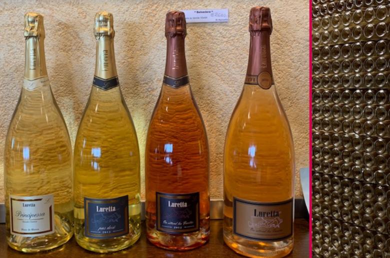 wine princess, luretta, azienda vitivincola, famiglia Salamini, cantina, castello di Momeliano