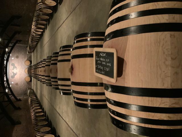 Oltrepò pavese, tenuta mazzolino, Noir 2017, Pinot Nero